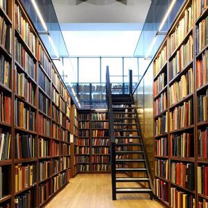 Библиотеки Очера